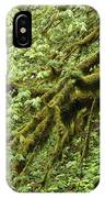Oregon Tree IPhone Case