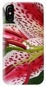 Oriental Hybrid Lily Named Dizzy IPhone Case