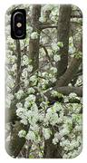 Oriental Pear Tree IPhone Case