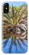 Ormond Scenic Loop Florida Palm Tree Painted  IPhone Case