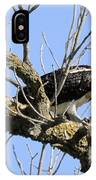 Osprey Meal Time IPhone Case