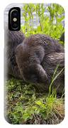 Otter Family Fun IPhone Case
