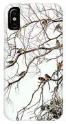 Out On A Limb First Snow IPhone Case