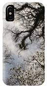 Overhead Trees In Exmoor, United Kingdom IPhone Case