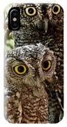 Owls From Amado Arizona IPhone Case