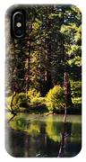 Oxbow Triptych IPhone Case