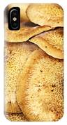 Oyster Mushroom IPhone Case
