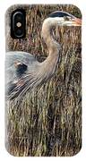 Pacer IPhone Case