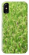 Paddy Field IPhone Case