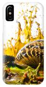 Paint Sculpture And Snail  IPhone Case
