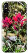 Paintbrush IPhone Case