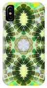 Painted Cymatics 181.66hz IPhone Case