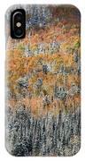 Painted In Orange IPhone Case