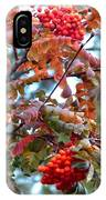 Painted Mountain Ash Berries IPhone Case