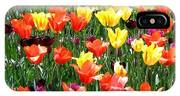 Painted Sunlit Tulips IPhone Case