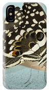Pair Of Citrus Swallowtail Butterflies  IPhone Case
