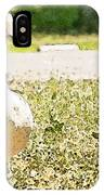 Pair Of Geese IPhone Case