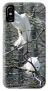 Paired Egrets At Lake Martin Louisiana IPhone Case