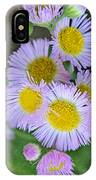 Pale Pink Fleabane Blooms With Decorations IPhone Case