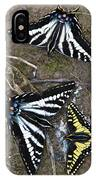 Pale Swallowtails And Western Tiger Swallowtail Butterflies IPhone Case