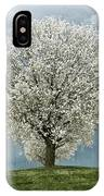 Pale White Tree On Cloudy Spring Day E83 IPhone Case
