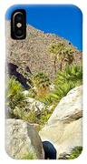Palm Oasis On Borrego Palm Canyon Trail In Anza-borrego Desert Sp-ca IPhone Case