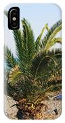 Palm Tree By The Beach IPhone Case