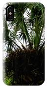 Palm Tree In Curacao IPhone Case