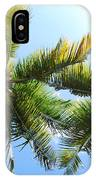 Palm Trees In Puerto Rico IPhone Case