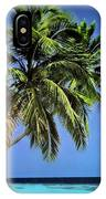 Palm Trees On Little Palm Island Filtered IPhone Case
