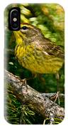 Palm Warbler Pictures 38 IPhone Case
