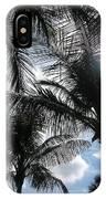 Palms In Stuart IPhone Case