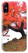 Panorama Of Red Maple Tree, Muskoka IPhone Case