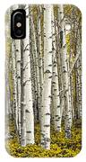 Panoramic Birch Tree Forest IPhone Case