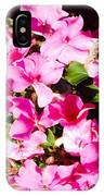 Pansies Garden IPhone Case