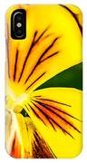 Pansy Flower 2 IPhone Case