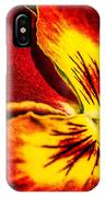 Pansy Flower 5 IPhone Case