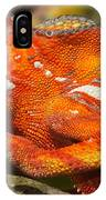 panther chameleon from Madagascar 3 IPhone Case