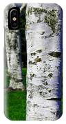 Paper Birch Trees IPhone Case