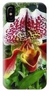 Paph Fiordland Sunset Orchid IPhone Case