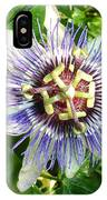 Passiflora Against Green Foliage In A Garden  IPhone Case