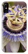 Passiflora Caerulea IPhone Case