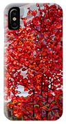 Passing Storm IPhone Case by Mandy Budan