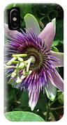 Passion Flower 5 IPhone Case