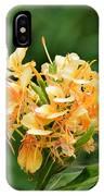 Pastel Peach Petals IPhone Case