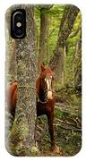 Patagonian Packhorse IPhone Case