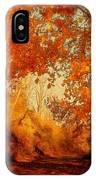 Path Of Gold IPhone Case