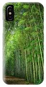 Path Through Bamboo Forest E139 IPhone Case
