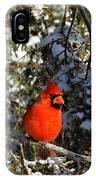 Patient Cardinal IPhone Case
