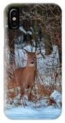 Peace Valley Park Deer IPhone Case